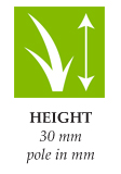 height-seda