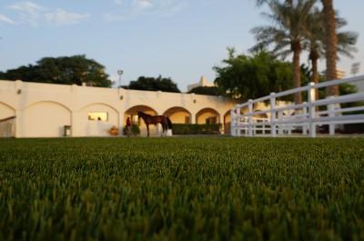 Questrian-club-silk-35-doha-Qatar-1000-m2-project-