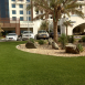 Royal Grass Al Ain UAE