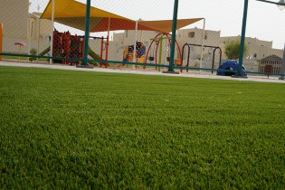 Royal Grass artificial grass qatar